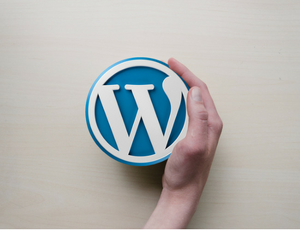 How To Add A Blog Post In WordPress (1)