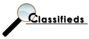 classified ad submissions seo